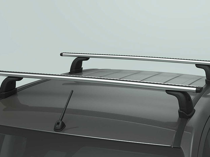 Roof Carrier System